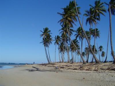 Dominikana Sylwester na Dominikanie