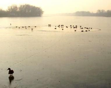 sylwester Frombork zabawa sylwestrowa we Fromborku nad jeziorem