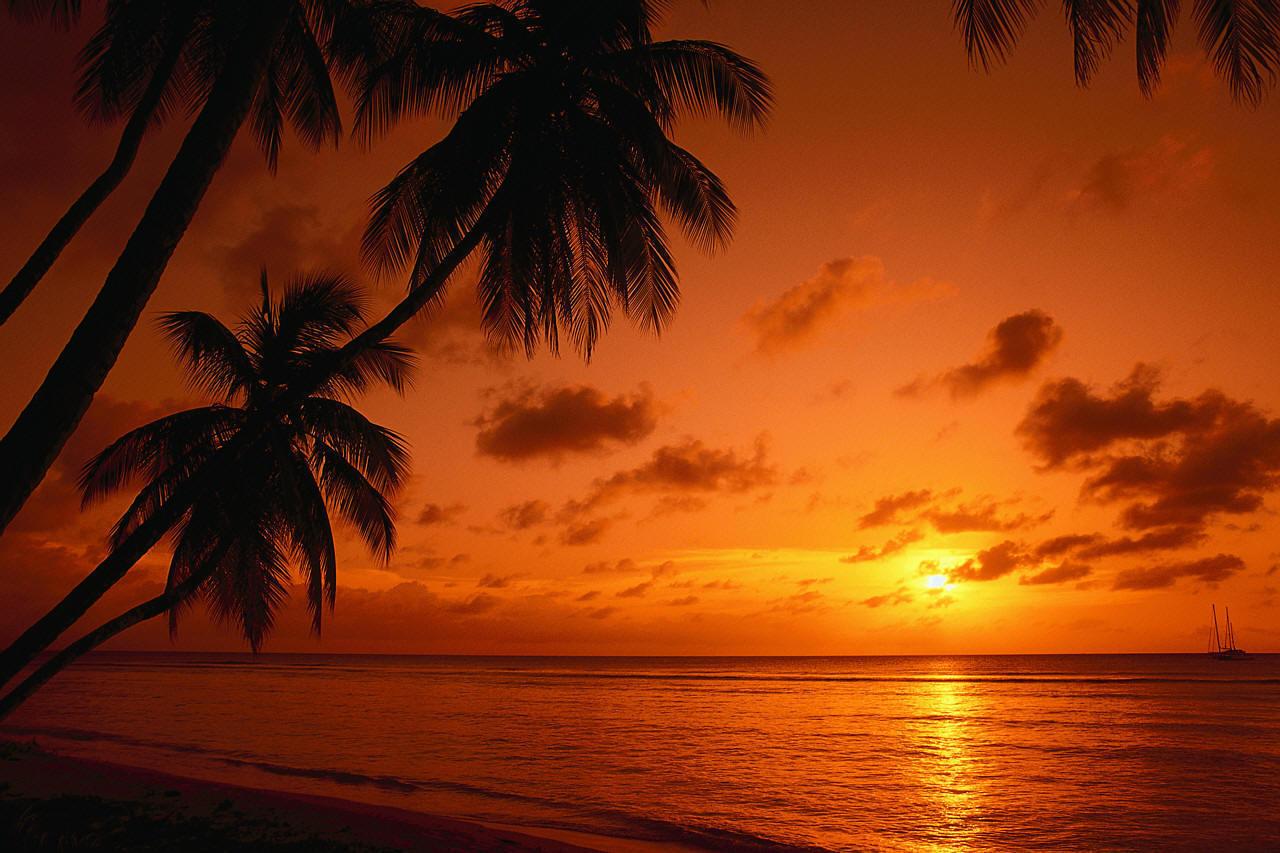 setting sun african caribbean - photo #8