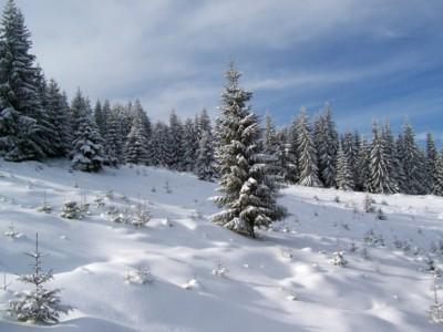 krościenko sylwester w krościenku na nartach