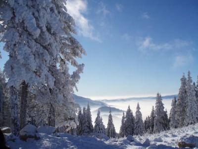 krosno sylwester w krośnie na nartach