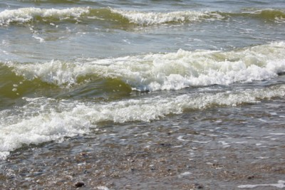 oferty krynica morska sylwester w krynicy morskiej nad morzem