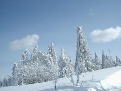 kudowa zdrój sylwester w kudowej zdroju na nartach