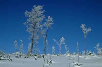 lądek zdrój sylwester w lądku zdroju na nartach