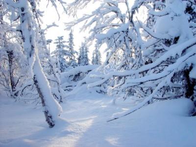 międzylesie sylwester w międzylesiu na nartach