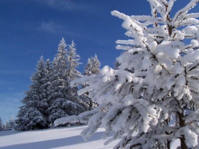 mszana dolna sylwester w mszanie dolnej na nartach