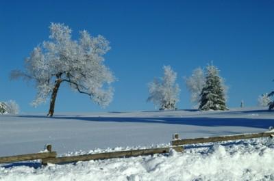 oferty polana sylwester w polanie na nartach