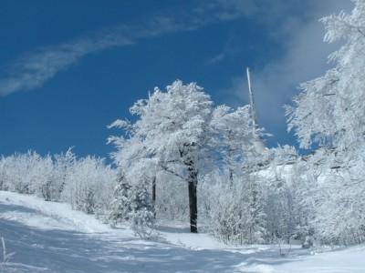 oferty racibórz sylwester w raciborzu na nartach