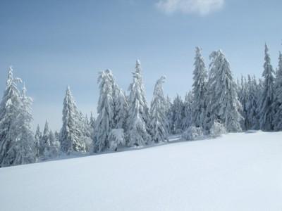 oferty solina sylwester w solinie na nartach