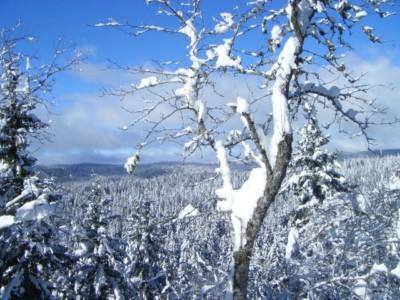 Sudety Sylwester w Sudetach na nartach na stoku