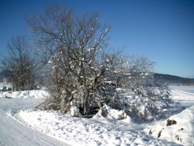imprezy świeradów zdrój sylwester w świeradowie zdroju na narty