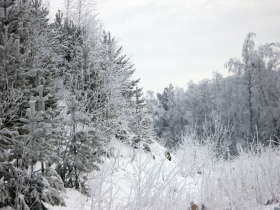 Szczawnica Sylwester w Szczawnicy na nartach