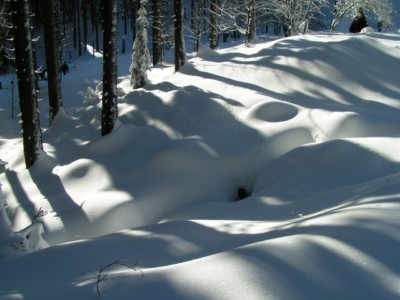 Szczyrk Sylwester w Szczyrku na nartach