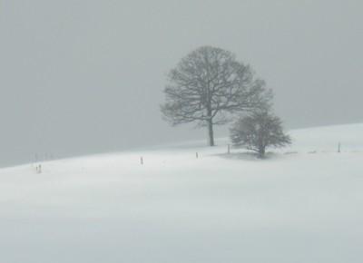 imprezy ustrzyki dolne sylwester w ustrzykach dolnych na narty